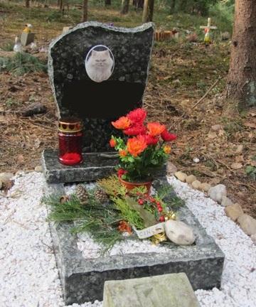 Hrob odkryty ramovy maly Zvireci hrbitov 1